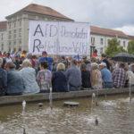 Anhängare till det rasistiska partiet Alternativ för Tyskland under en demonstration i staden Cottbus förra sommaren.