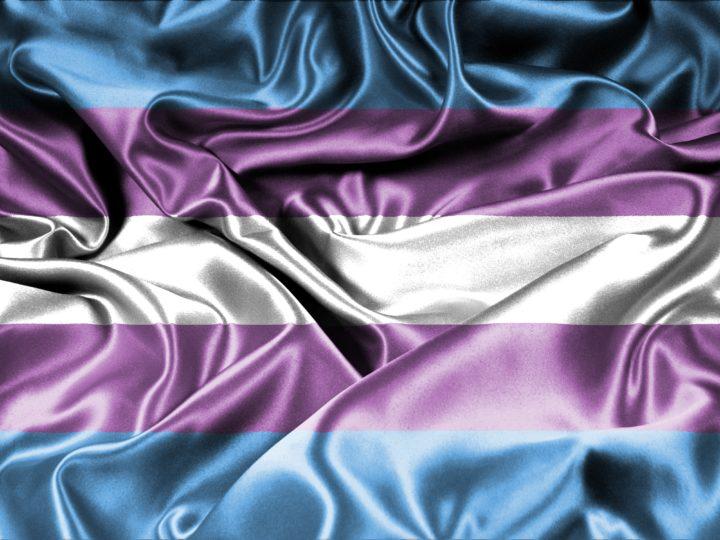 Trans pride-flaggan, som har färgerna ljusblå, rosa och vit i ett glänsande sidentyg.