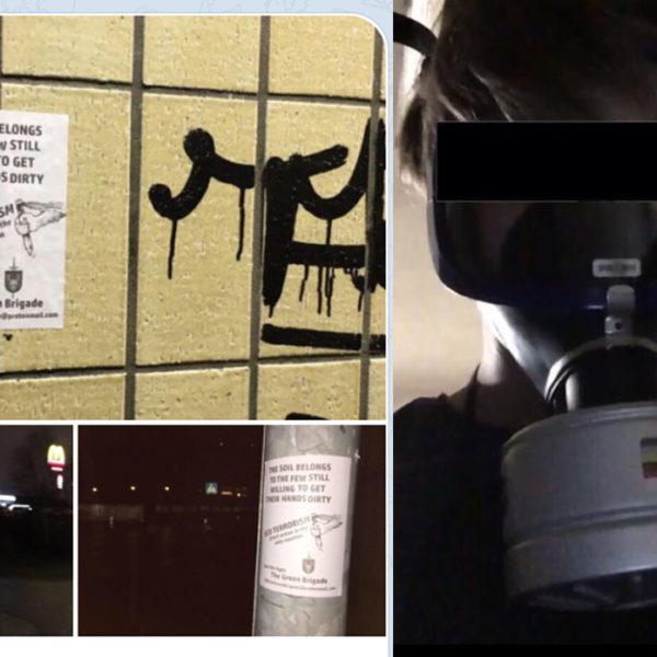 Bilder med affischer för ekofascistiska The Green Brigade, samt en bild från en av de mordbrandsdömda männens sociala medier, där han bär en gasmask,