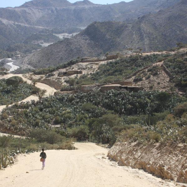 Landskapsbild från Etiopien.