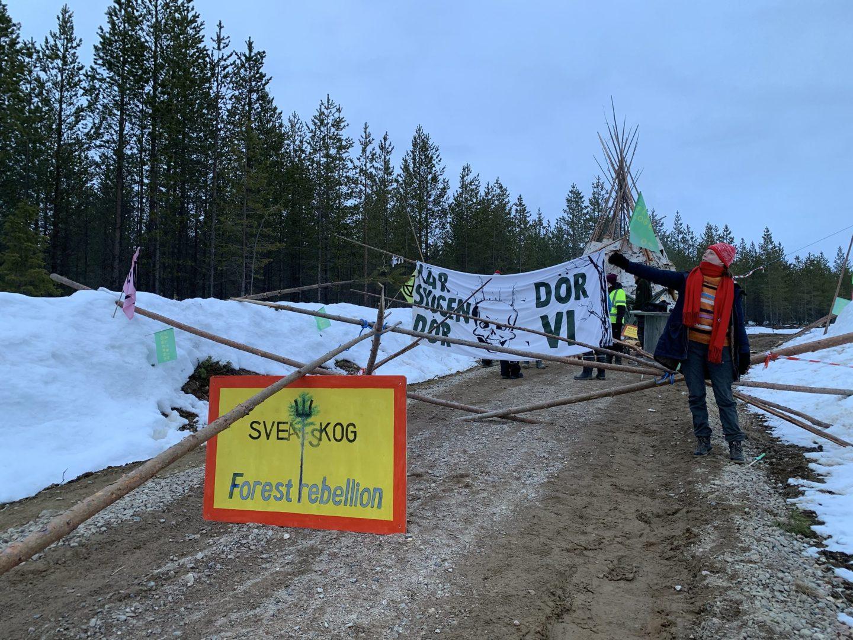 Klimataktivister blockerar en väg i protest mot Sveaskog