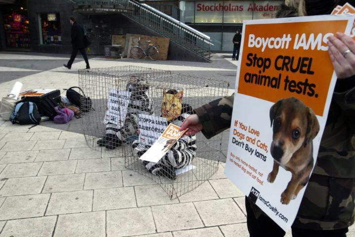 Manifestation mot djurförsök
